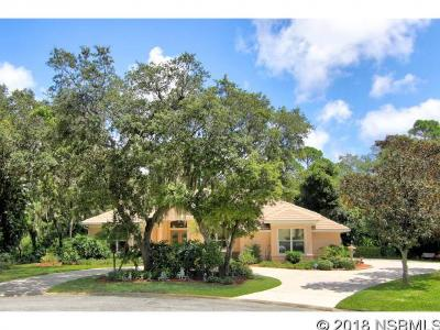 Port Orange Single Family Home For Sale: 2700 Autumn Leaves Dr