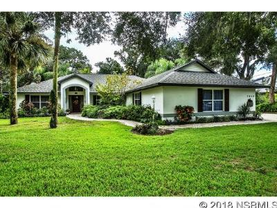 Port Orange Single Family Home For Sale: 5822 Boggs Ford Rd