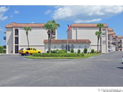 New Smyrna Beach FL Single Family Home For Sale: $425,000