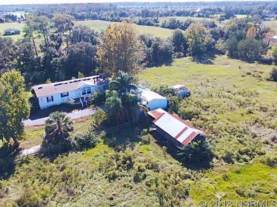 New Smyrna Beach FL Single Family Home For Sale: $435,000