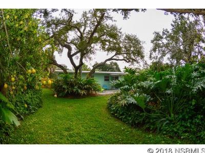New Smyrna Beach Single Family Home For Sale: 638 Yupon Ave