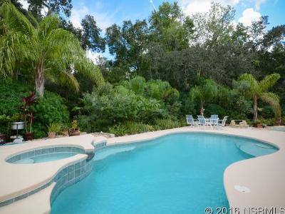 New Smyrna Beach Single Family Home For Sale: 424 Glencoe Rd