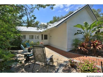 New Smyrna Beach Single Family Home For Sale: 202 Peninsula Ave