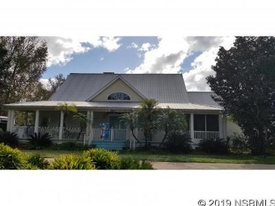 New Smyrna Beach Single Family Home For Sale: 2520 Glencoe Farms Rd