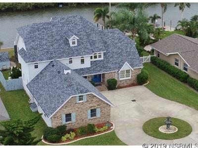 New Smyrna Beach Single Family Home For Sale: 19 Cunningham Dr
