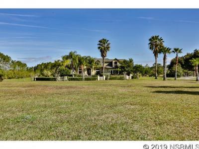 New Smyrna Beach Single Family Home For Sale: 231 Cr 415