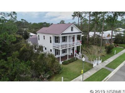 New Smyrna Beach Single Family Home For Sale: 2683 Old Smyrna Trl
