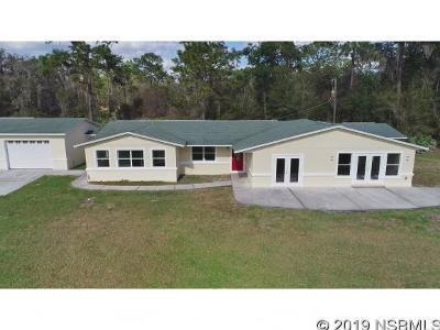 New Smyrna Beach Single Family Home For Sale: 4354 Lake Ashby Rd