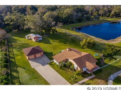 New Smyrna Beach FL Single Family Home For Sale: $324,900