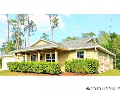 New Smyrna Beach Single Family Home For Sale: 875 Twisted Pine Dr