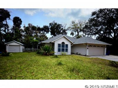 New Smyrna Beach Single Family Home For Sale: 2221 Swoope Drive