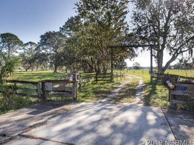New Smyrna Beach Single Family Home For Sale: 1299 State Road 415