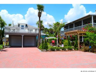 New Smyrna Beach Multi Family Home For Sale: 223 Crawford Rd