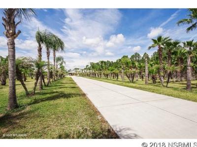 New Smyrna Beach FL Single Family Home For Sale: $1,175,000