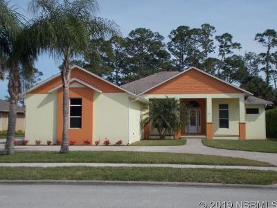 New Smyrna Beach Single Family Home For Sale: 2813 Osprey Cove Dr