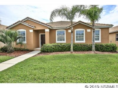 New Smyrna Beach Single Family Home For Sale: 3360 Velona Ave