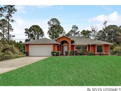 New Smyrna Beach Single Family Home For Sale: 823 State Road 415