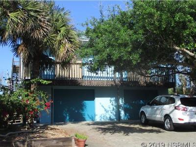 New Smyrna Beach Single Family Home For Sale: 6231 Engram Rd