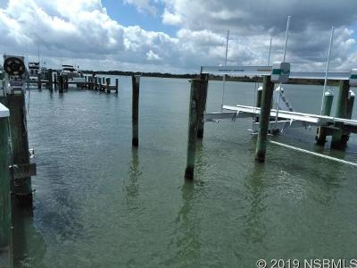 Boat Dock For Sale: Minorca Beach Way #10