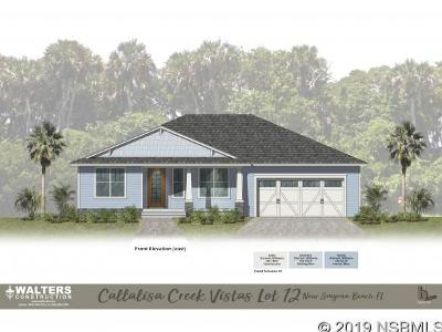 New Smyrna Beach Single Family Home For Sale: 1602 Saxon Drive
