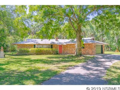 Port Orange Single Family Home For Sale: 2093 Halifax Drive