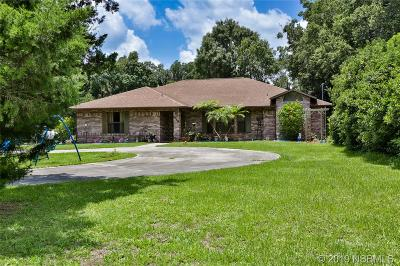 Edgewater Single Family Home For Sale: 1648 Air Park Road