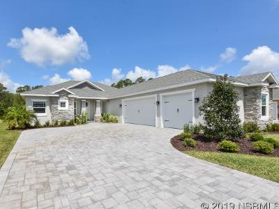 New Smyrna Beach FL Single Family Home For Sale: $410,000