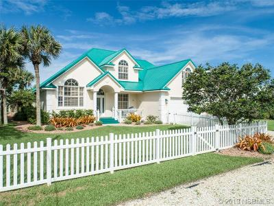 New Smyrna Beach Single Family Home For Sale: 4724 Van Kleeck Drive