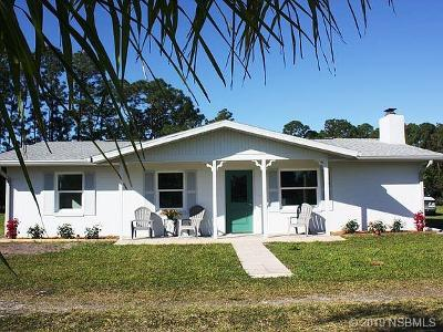 New Smyrna Beach Single Family Home For Sale