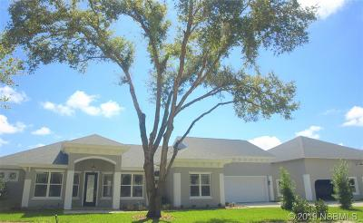 Port Orange Single Family Home For Sale: 2538 Tail Spin Trail