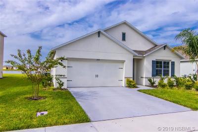 New Smyrna Beach FL Single Family Home For Sale: $274,900