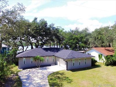Port Orange Single Family Home For Sale: 5512 W Bayshore Drive