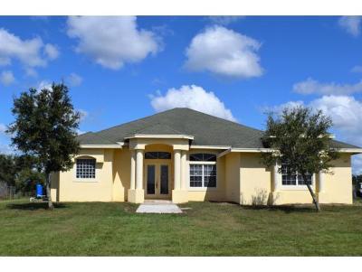 Okeechobee County Single Family Home For Sale: 15033 NW 248th Street