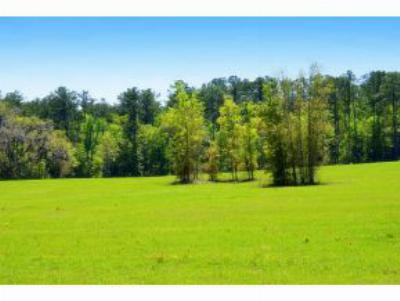 Reddick FL Residential Lots & Land For Sale: $415,000
