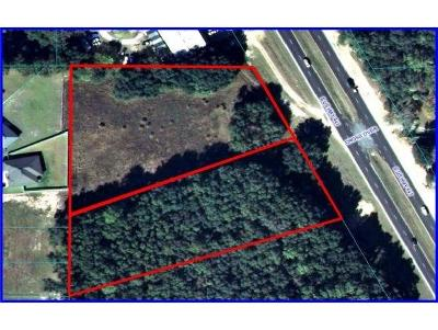 Belleview Residential Lots & Land For Sale: S Us Highway 441