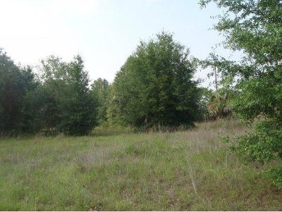Belleview Residential Lots & Land For Sale: SE County Road 25
