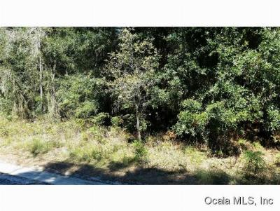 Residential Lots & Land Sold: SW 156th Place