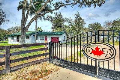 Ocala Farm For Sale: 6955 NW 100 Street