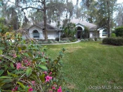 Dunnellon Single Family Home For Sale: 11993 N Bluff Cove Path