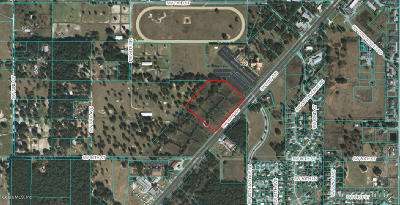 Residential Lots & Land For Sale: 6555 SW Sr 200