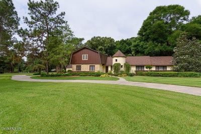 Ocala Single Family Home Sold: 700 SE 48th Avenue