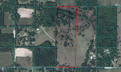 Micanopy FL Residential Lots & Land For Sale: $289,000