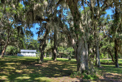 Micanopy Farm For Sale: 8337 NW Hwy 320