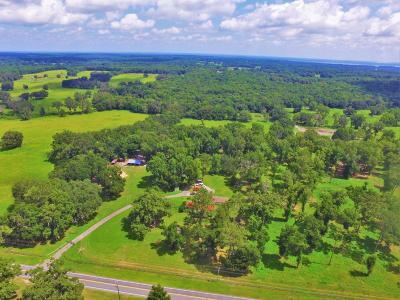 Micanopy Farm For Sale: 6897 NW 193rd Street
