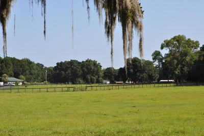 Ocala Residential Lots & Land For Sale: NW 100th Ave