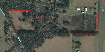 Reddick FL Residential Lots & Land For Sale: $399,000