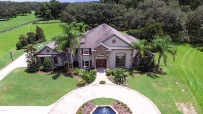 Ocala Farm For Sale: 1271 SW 104th St Road