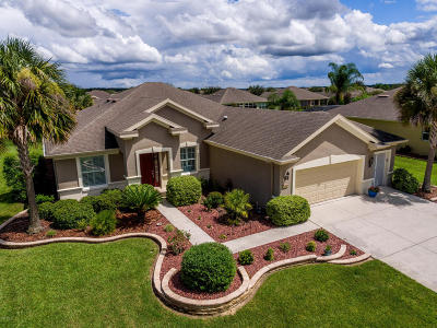 Stone Creek Single Family Home For Sale: 7211 SW 95th Court