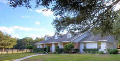 Ocala Single Family Home For Sale: 540 SE 131st Street