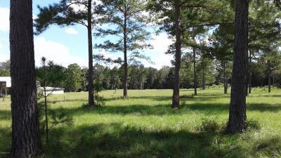 Williston FL Single Family Home For Sale: $599,000